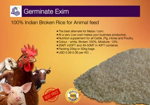 100% Indian Broken Rice for Animal Feed