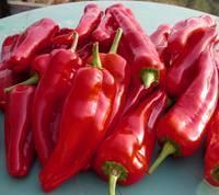 Pure Red Chili Pepper