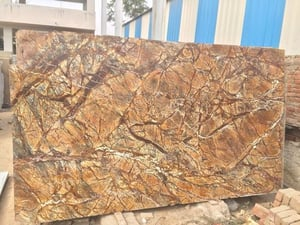 Finely Finished Rainforest Brown Marble