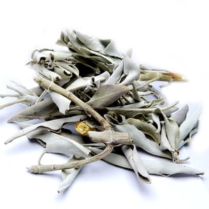 Satyamani Natural California White Sage Smudge Leaves and Clusters
