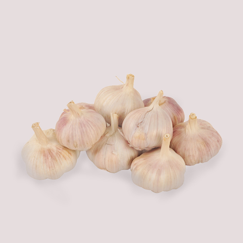 Farm Fresh Garlic