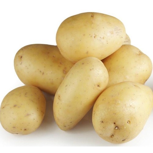 Farm Fresh Bright Yellow Potato
