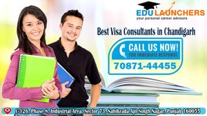 Visa Counseling Services
