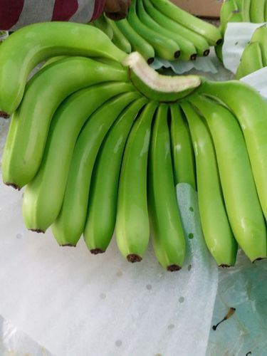 Farm Fresh Cavendish Banana