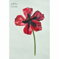 Poppy Flower Print Painting