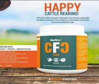 Cattle Feed Concentrate CFC Plus Supplement for Cattle