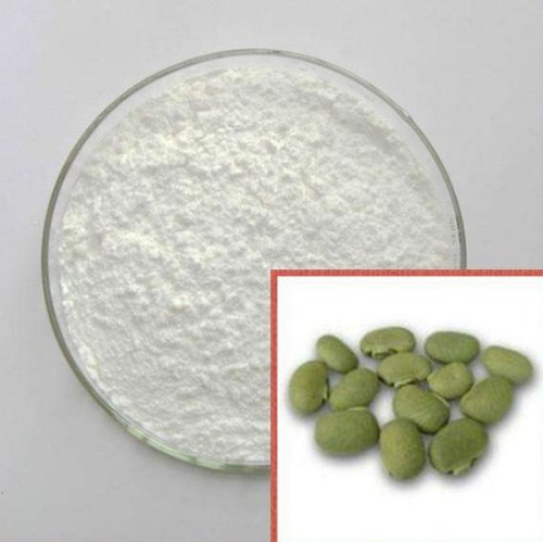 High Quality Levodopa 99% Plant Extract