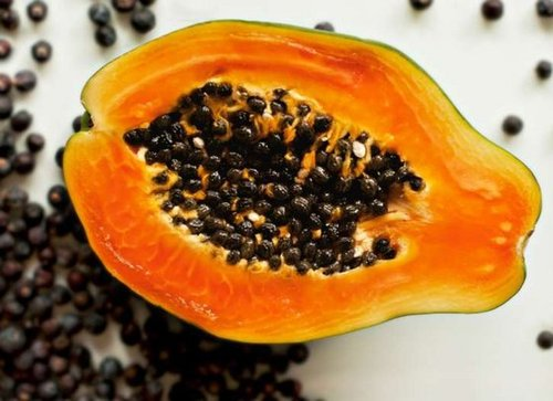 Solubility No Less 95% Dry Papaya Seed Powder