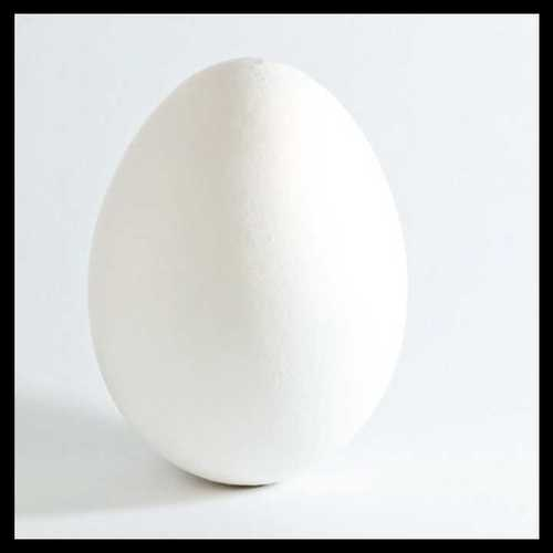 Poultry Eggs In Bengaluru, Poultry Eggs Dealers & Traders In