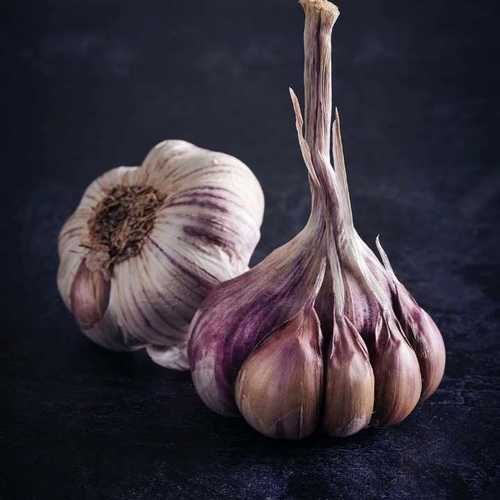 Pure Fresh Garlics