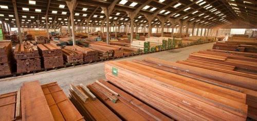 Azobe Wood Timber Logs