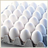 Poultry White Eggs