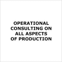Operational Consulting On All Aspects Of Production