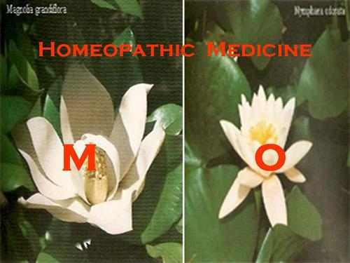 Homeopathic Medicines - M - O
