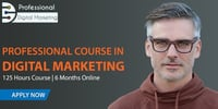 Professional Course in Digital Marketing 6 Months Online Program with Live Sessions