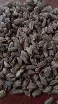 Dried Whole Black Cardamom