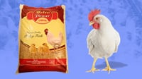 SRC Weight Gain Poultry Feed