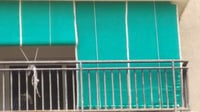Green Net Curtains For Balcony