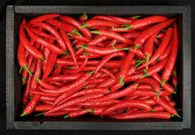 Fresh Red Chilli Pepper