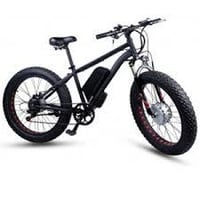 Electric Bicycle With Rear Disk Brakes
