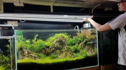 LED Lights for Fishing Aquarium