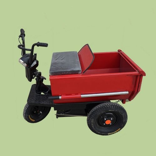 High Power Electric Tricycle