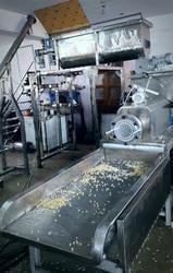 Industrial Commercial Pasta Plant