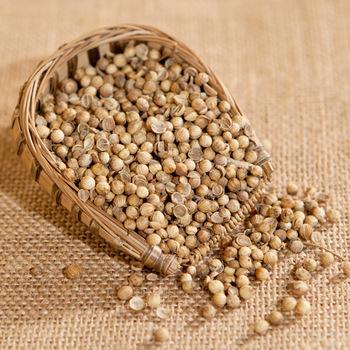 Superior Grade Coriander Seeds