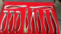 Standard Tooth Extracting Forceps
