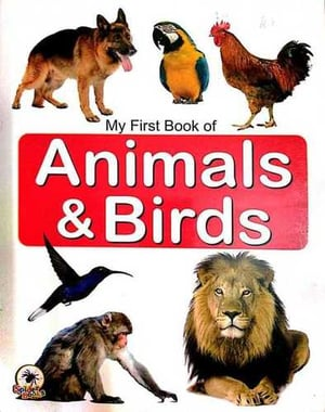 Animal and Birds Book
