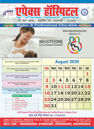 Promotional New Year Wall Calender
