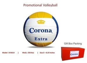Multi Promotional Volley Ball