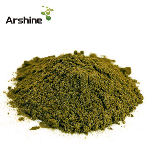 Rosemary Extract Powder