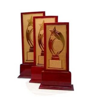 Brass and Wooden Trophies