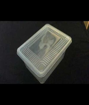 Impeccable Finish Biodegradable Containers