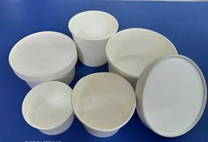 Plain Paper Food Containers With Lid