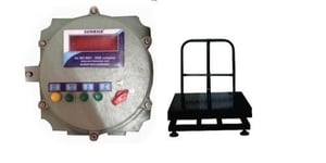 300 Kg Flame Proof Scale With Peso Certificate