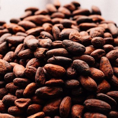 Fresh Organic Cocoa Beans Certifications: Iso
