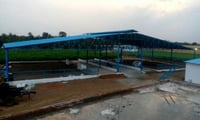 Prefabricated Dairy Farm Cow Shed