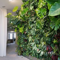 Plastic Artificial Green Walls