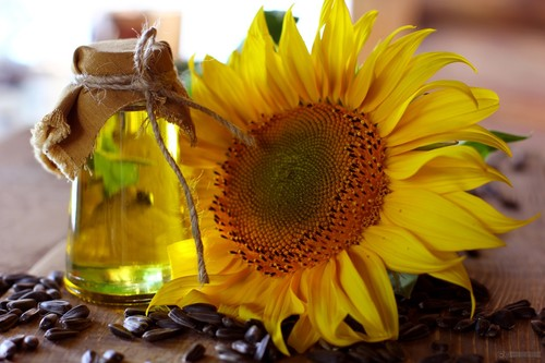 Light Yellow Refined Sunflower Oil