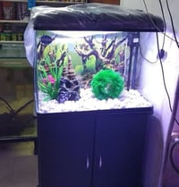 RS Electrical Fish Aquarium