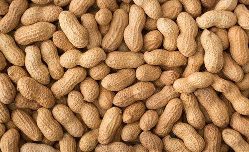 Rich Taste Peanuts Seeds
