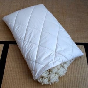 Silk Cotton Pillow with White Cotton Cover