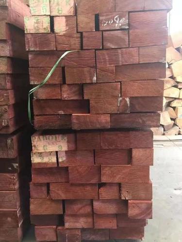 Fresh Padauk Wood Logs