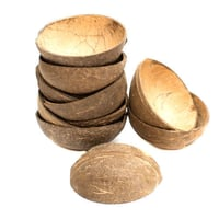 100% Natural Coconut Shell