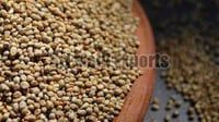 Organic Brown Millet Seeds