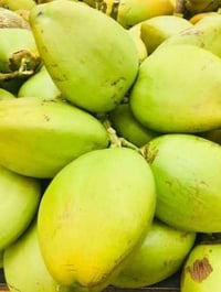A Grade Fresh Tender Coconut