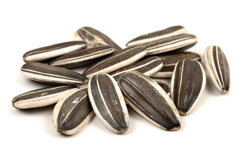 High in Vitamin E and Selenium Sunflower Seeds