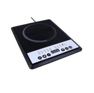 Electric Portable Induction Stove